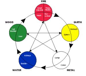 5-elementsteorien og des forhold til angstbehandling