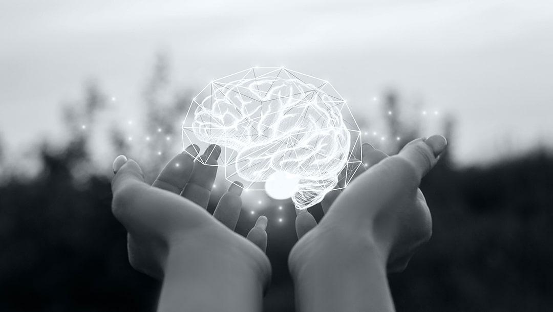 Hjernen min